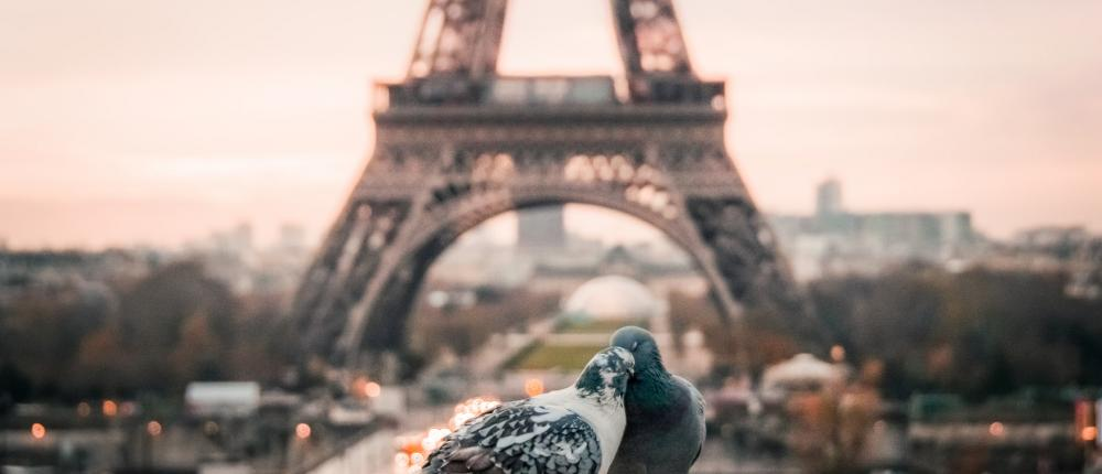 Eternally romantic Paris for your Valentine's Day